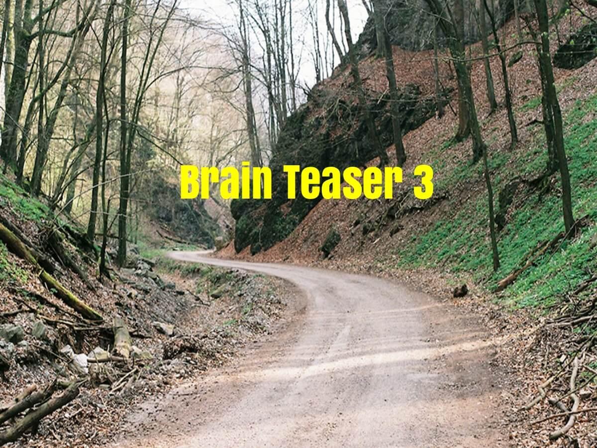 brain teaser 3