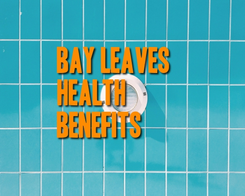 bay-leaves-health-benefits